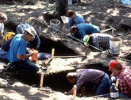 Geologists, paleontologists, archaeologists and sometimes anthropologists dig to find their evidence